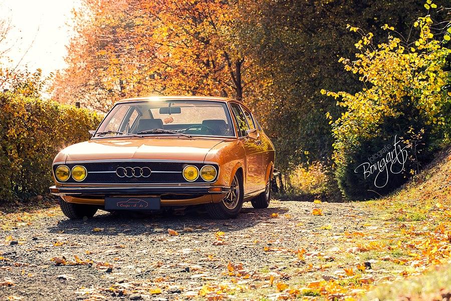 Fotografie Bongartz: MrsOrangina im Herbstgewand